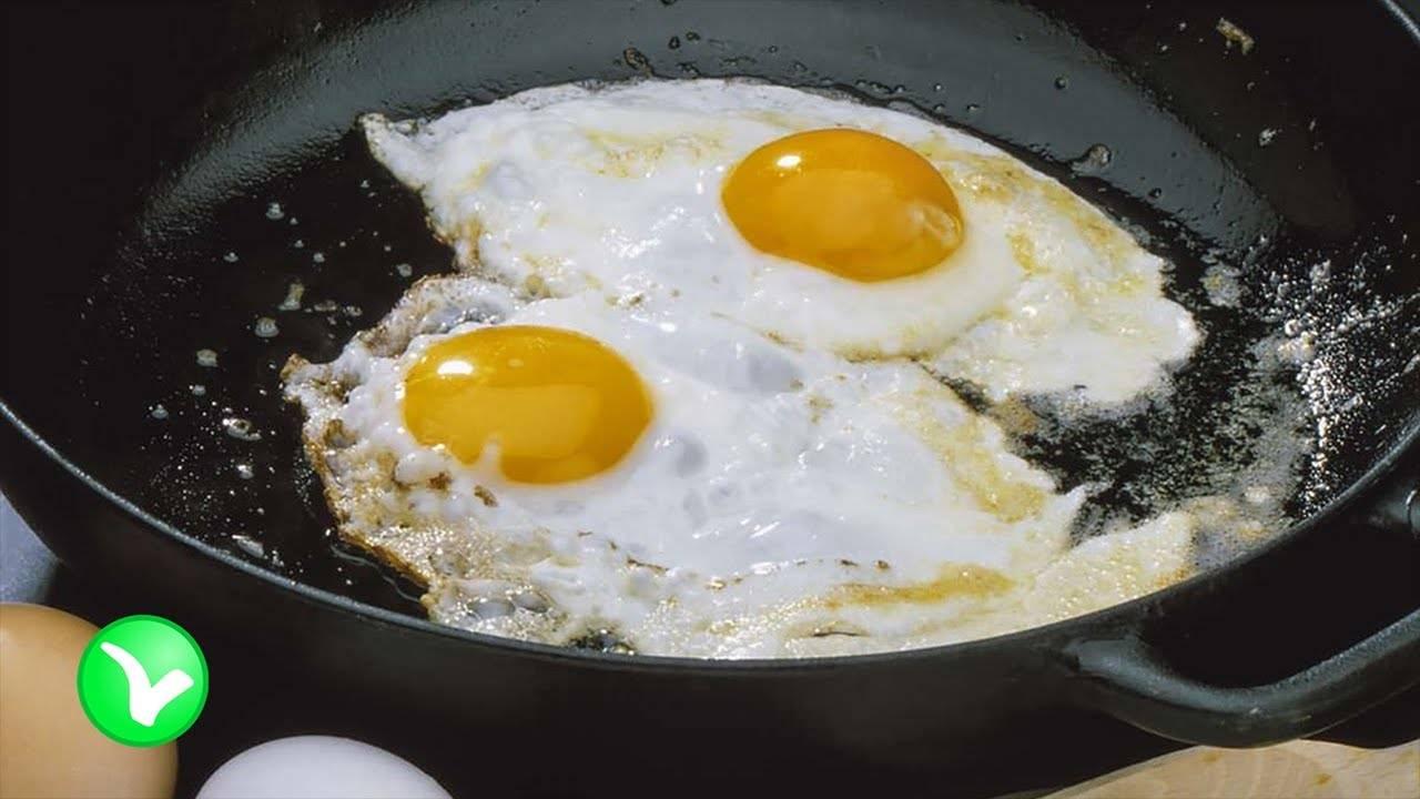 Яйцо куриное, польза и вред для организма человека