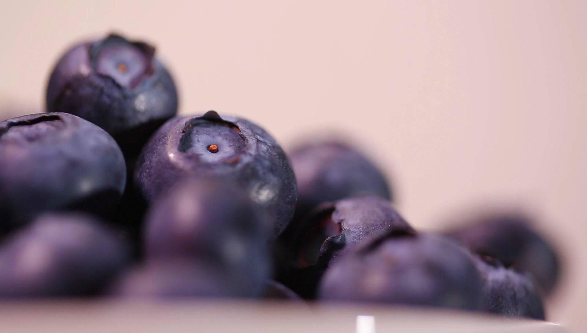 Какие ягоды самые лучшие и полезные: топ-5
