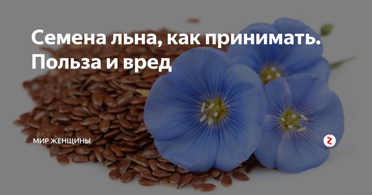 Семена льна для очищения кишечника. секреты, рецепты, отзывы