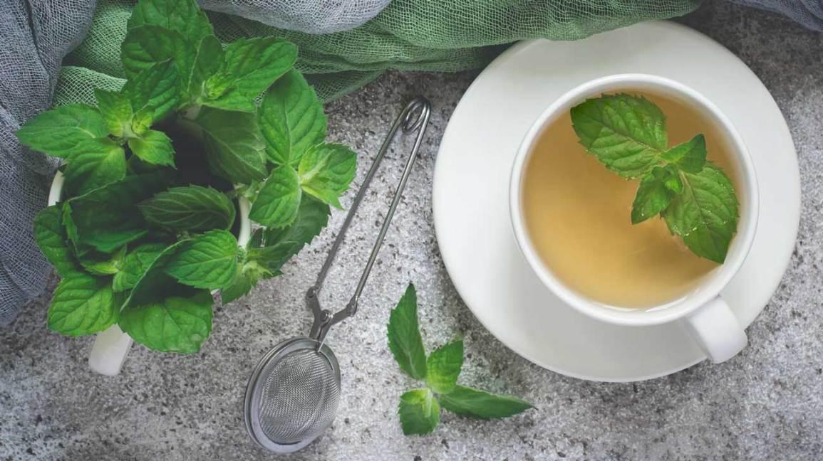 Если пить мятный чай каждый день,вот что будет с вашим телом