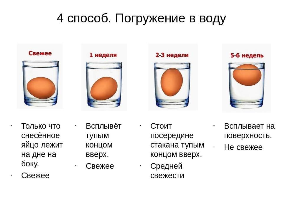 Как определить свежее яйцо или нет с помощью воды