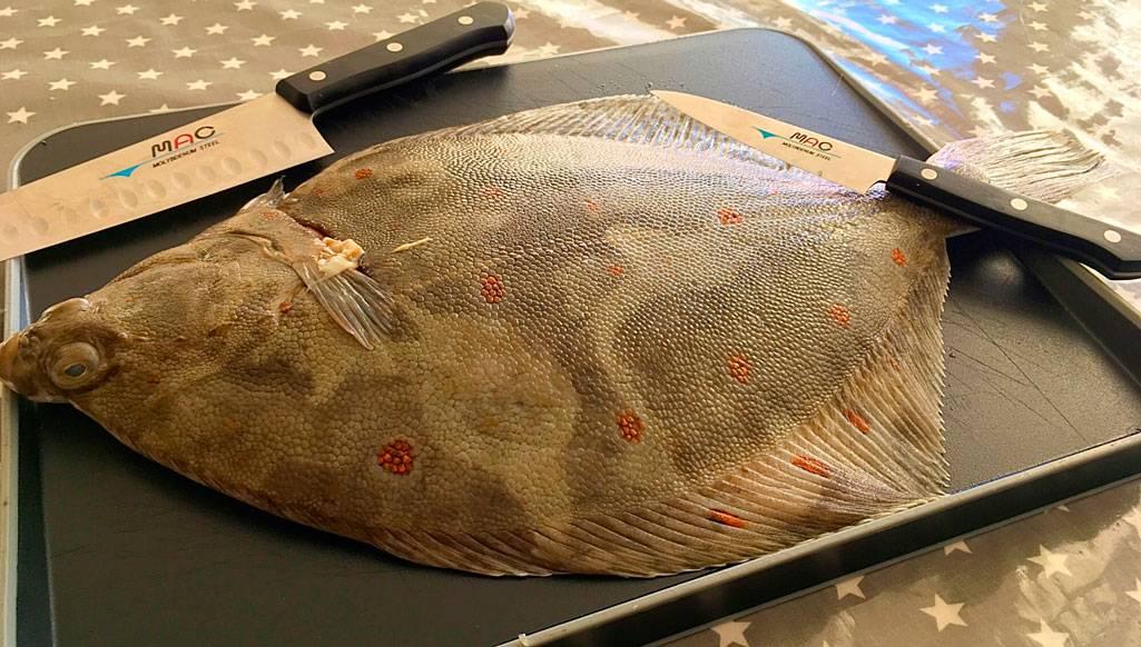 Морская рыба камбала: польза и вред для организма