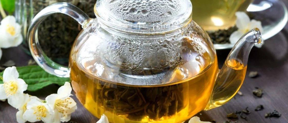 Польза и вред жасминового чая для здоровья