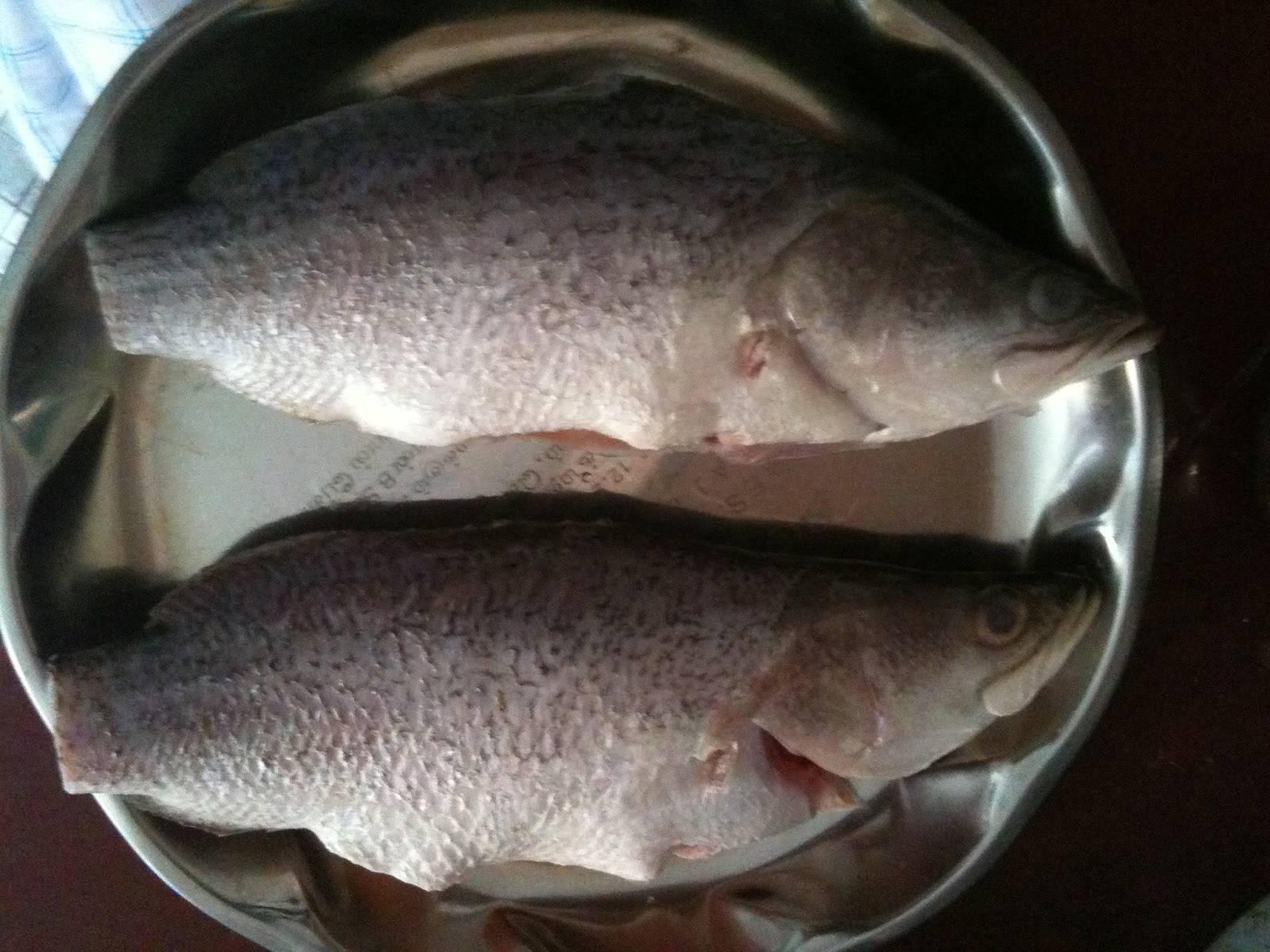 Хотите знать, как правильно разморозить рыбу?