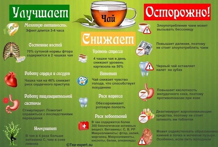 Чай с бергамотом — ароматный и полезный