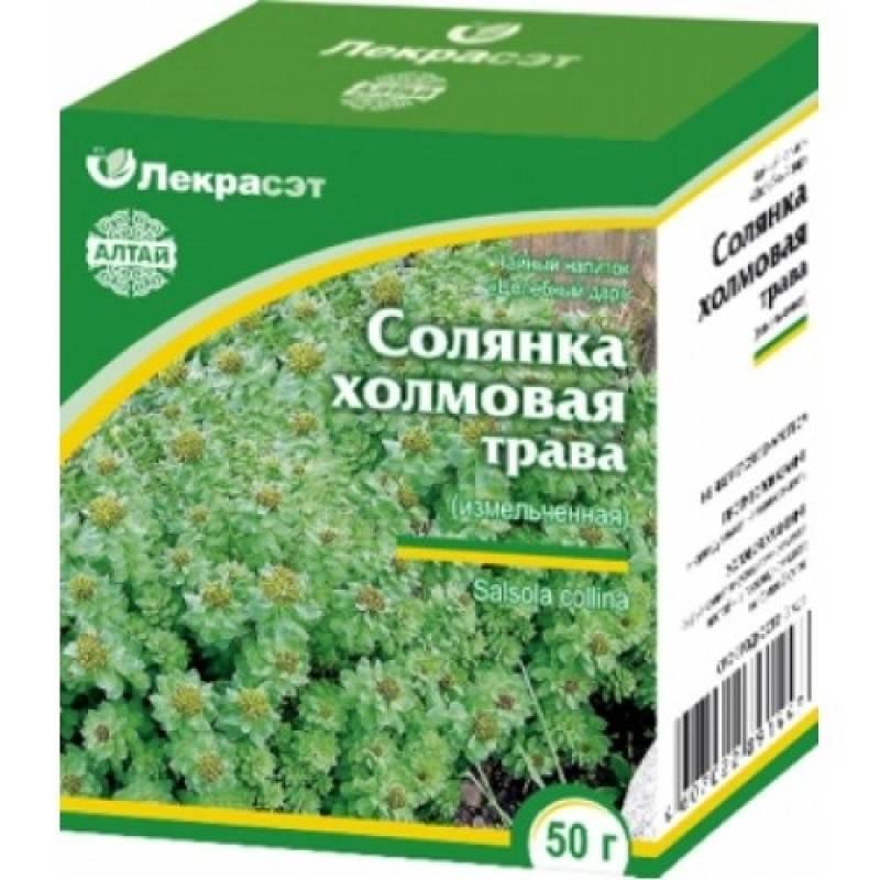 Трава солянка холмовая — лечебные свойства, показания, противопоказания. солянка холмовая — инструкция по применению