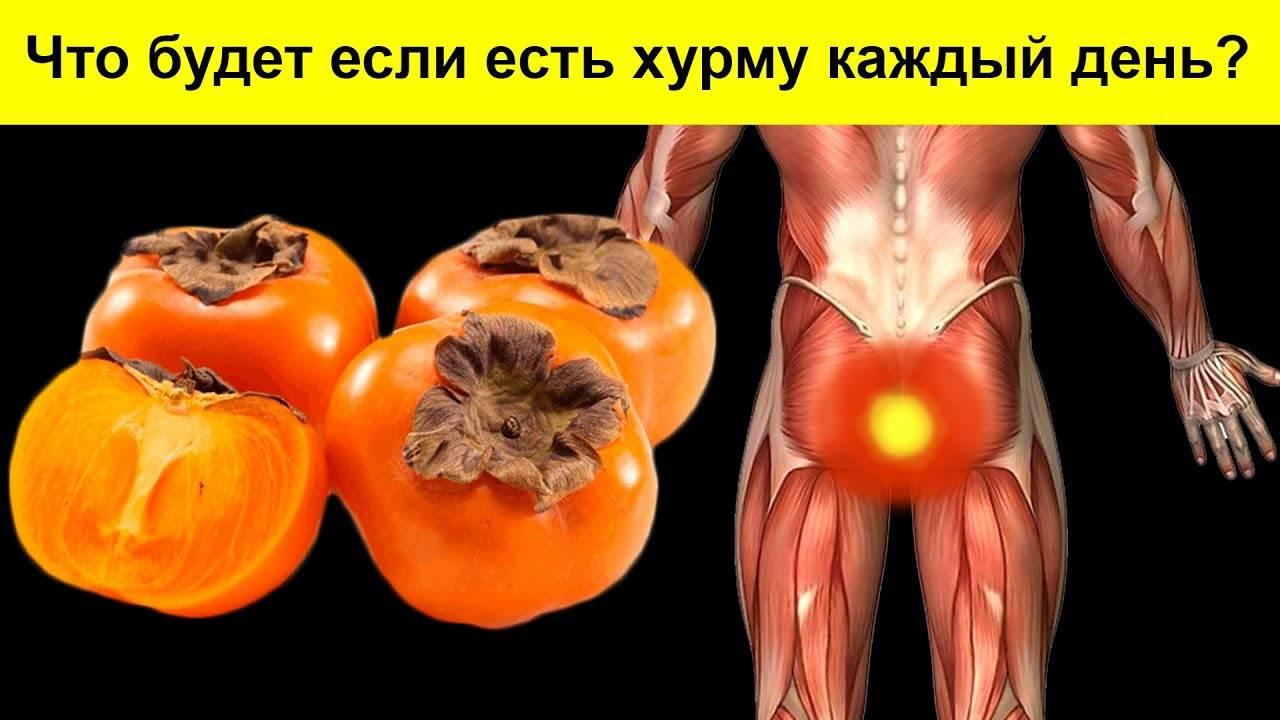 Хурма: польза и вред для организма человека. химический состав хурмы