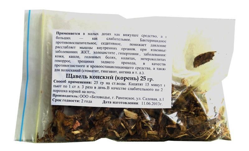 Конский щавель: состав, лечебные свойства, применение в кулинарии