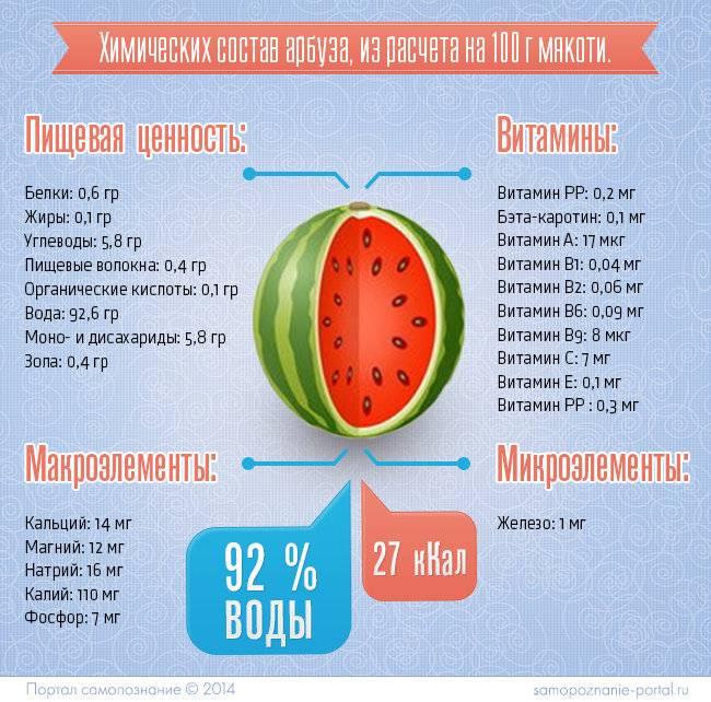 Арбуз польза и вред для здоровья как сохранить арбуз на зиму