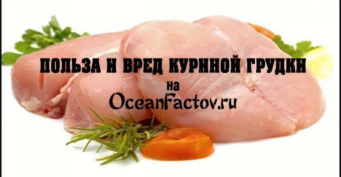 Куриное филе содержание полезных веществ, польза и вред, свойства