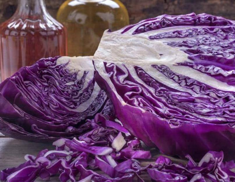 Краснокочанная капуста: полезные свойства и противопоказания, применение