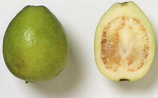 Фрукт гуава — полезные свойства и вред, состав, польза сока, как едят