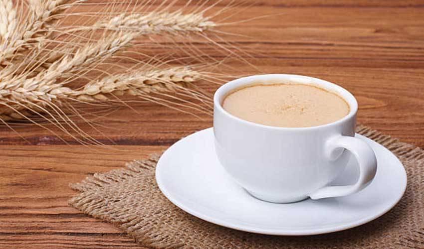 Ячменный кофе: польза и вред