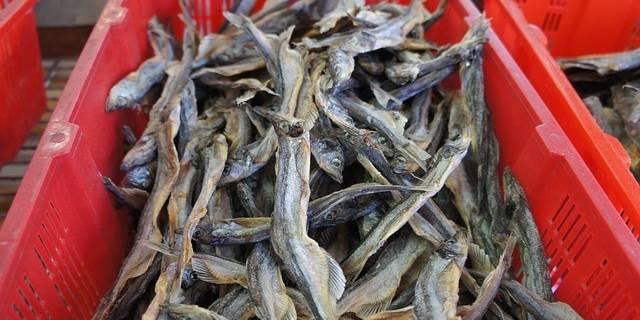 Можно ли поправиться от сушеной рыбы
