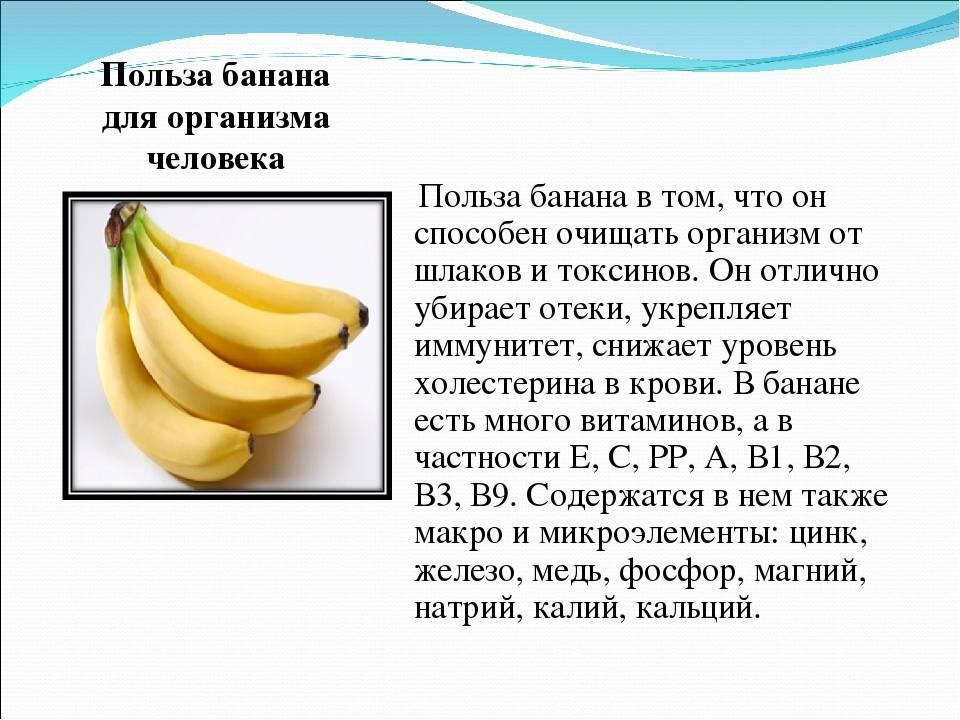 Питательная ценность, вред и польза бананов для организма