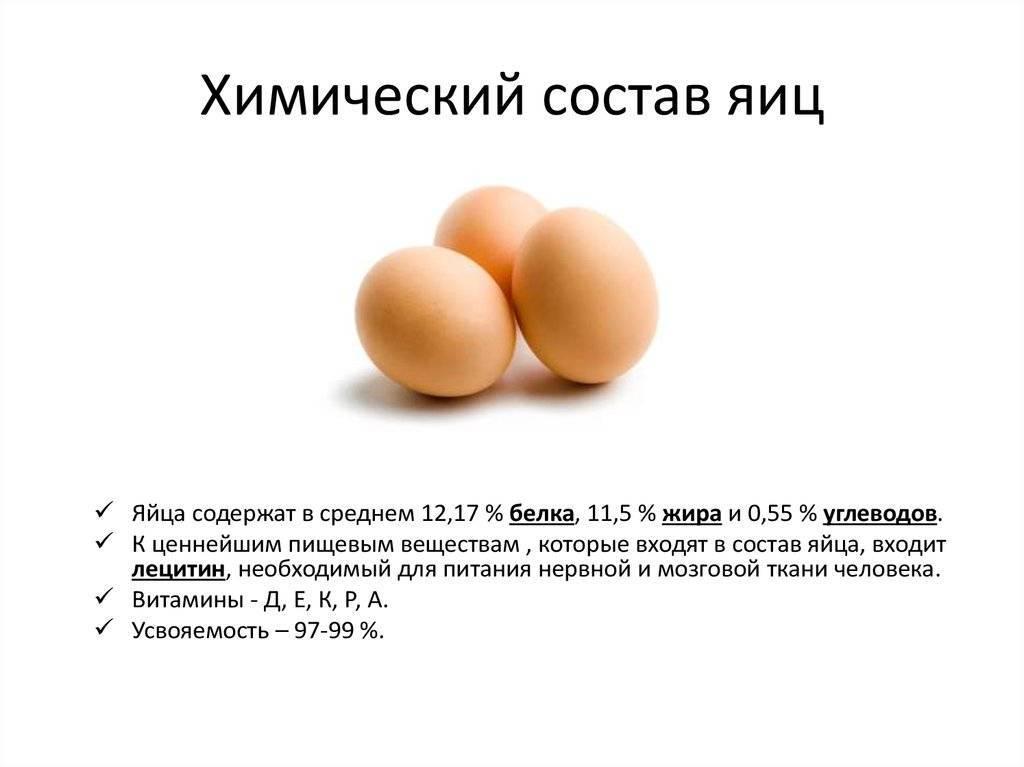 Вареные яйца: польза и вред для организма