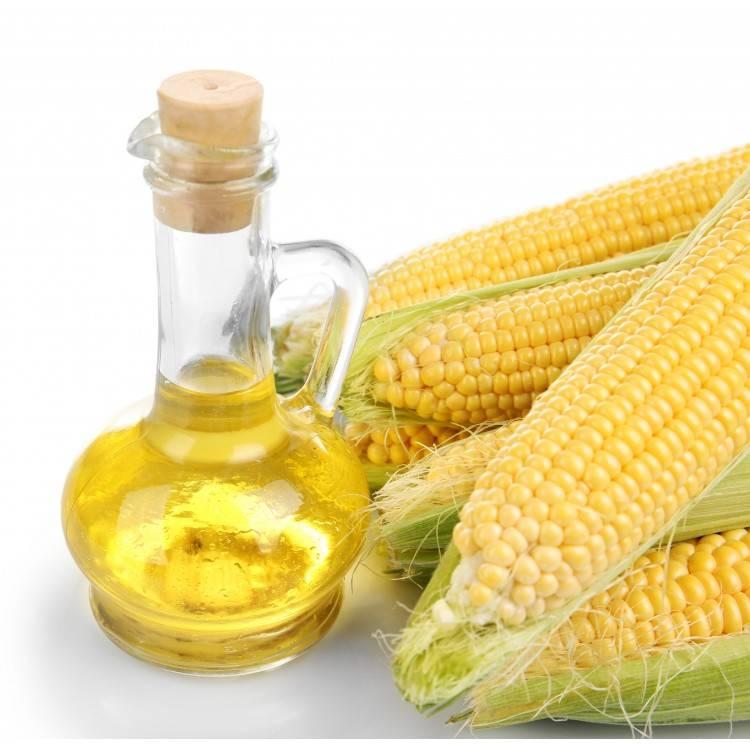 Кукурузное масло — полезные свойства и противопоказания