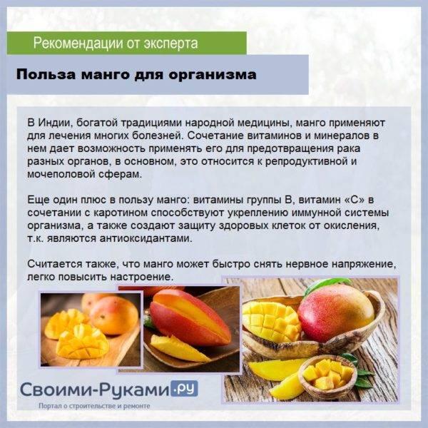 Плоды манго польза и вред
