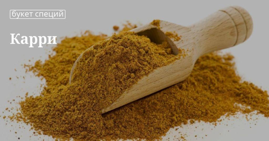 Приправа карри — польза и вред для здоровья