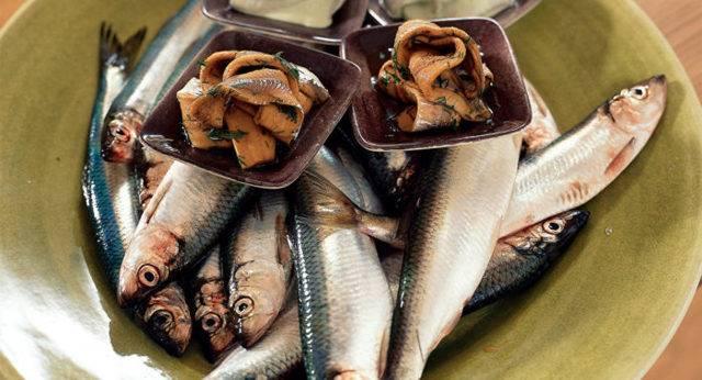 Откуда завезен рыба пеленгас. пленегас — чем полезна эта рыбка? оригинальный рецепт приготовления. история появления в южных морях