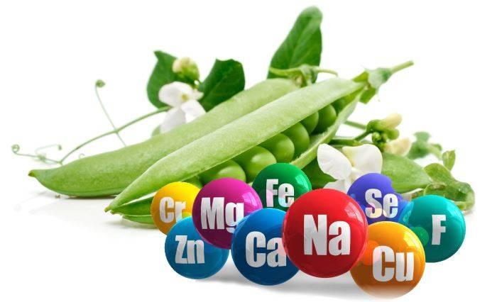 Зеленый горошек: польза и вред для здоровья