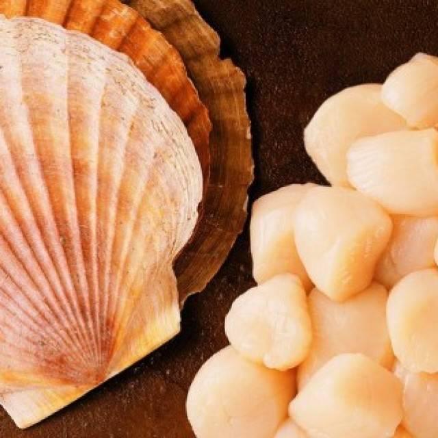 Польза и вред морского гребешка — калорийность, свойства и особенности приготовления (95 фото)