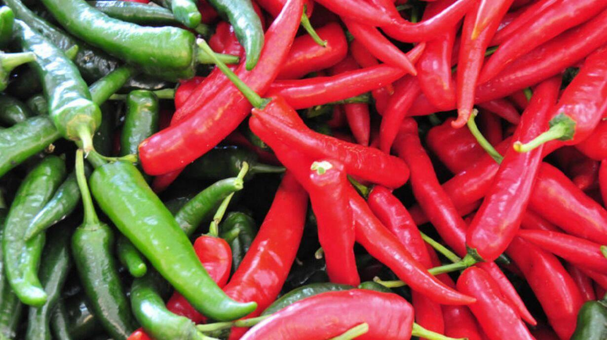 Что такое кайенский перец: его особенности и техника выращивания