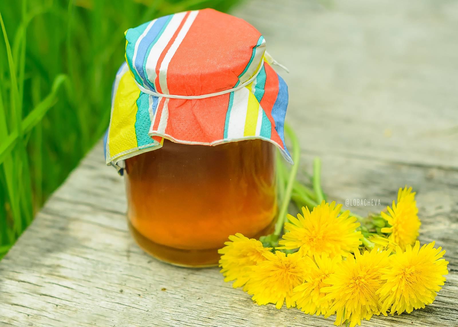 Рецепты приготовления меда из одуванчиков и его свойства