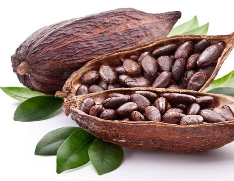 Бобы какао: польза и применение. какао-бобы: фото
