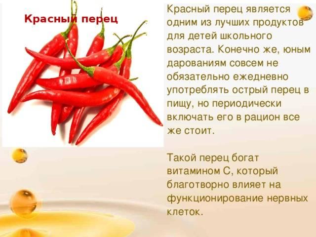 Болгарский перец — польза и вред для здоровья, свойства и противопоказания