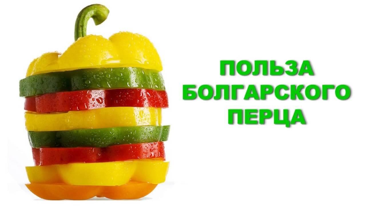 Чем полезен болгарский перец, свойства