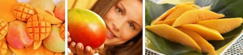 Польза и вред манго для организма