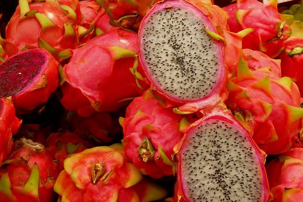 Гуава фрукт или заморское яблоко тропических лесов