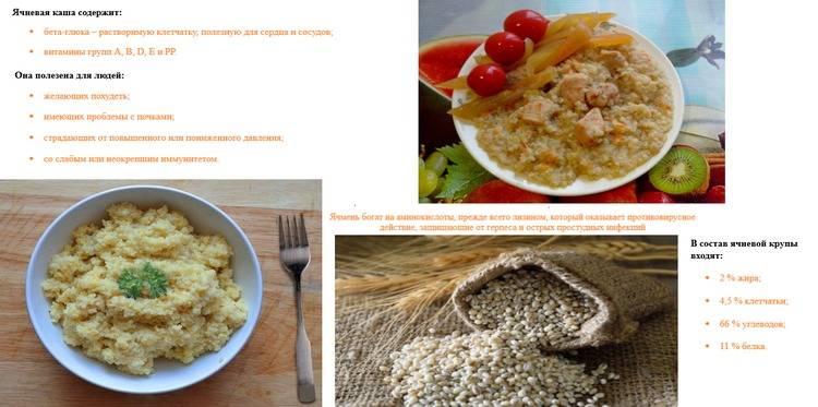 Польза и вред ячневой каши: полезность крупы, противопоказания к употреблению, правильное хранение зёрен