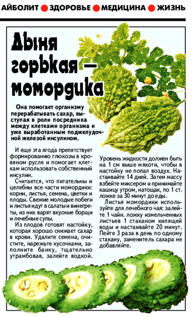 Лечебные свойства момордики: простые и эффективные рецепты
