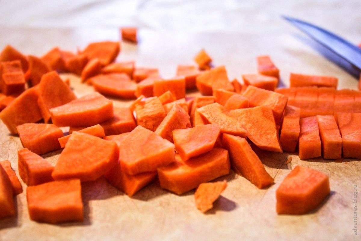 Секреты быстрого всхода моркови: как замочить семена перед посадкой