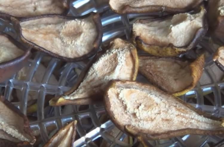 Сушеные груши в духовке. как сушить груши в домашних условиях — эффективные способы и советы