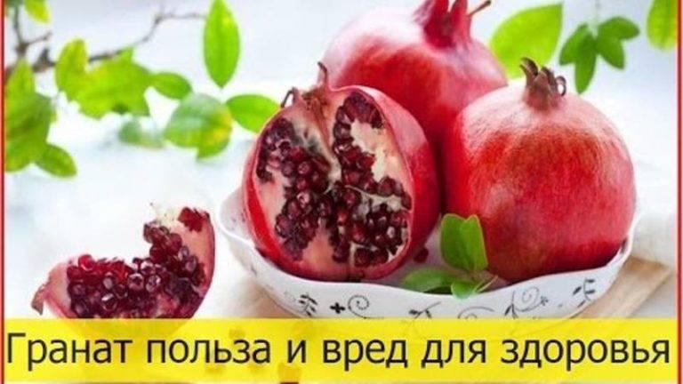 Гранат — польза и вред для организма королевского фрукта