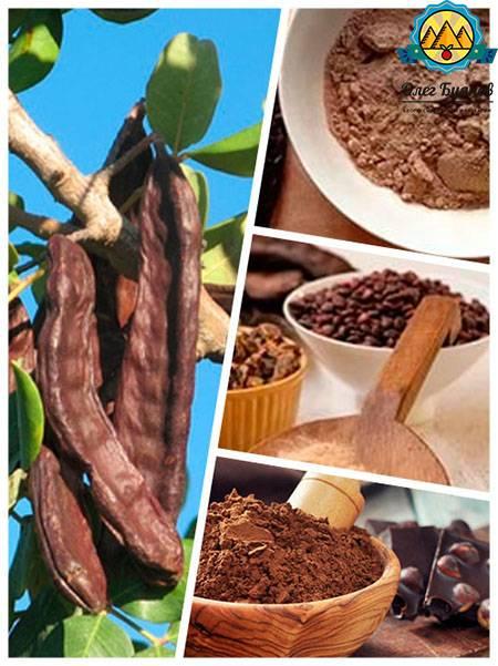 Плоды рожкового дерева: польза и вред, свойства, как употреблять, фото
