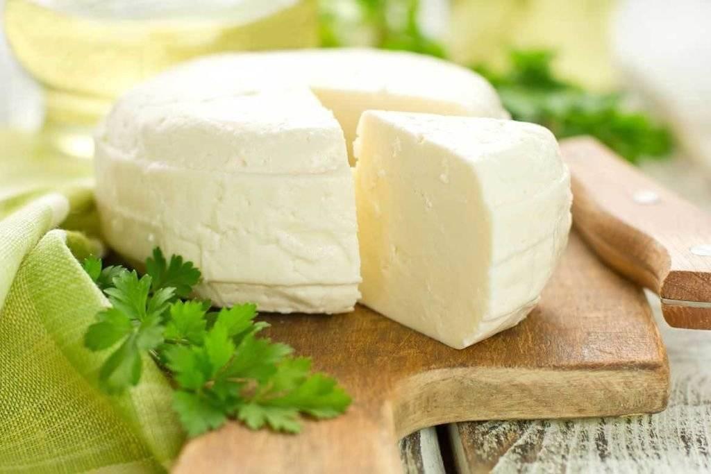 Адыгейский сыр — польза и вред для организма