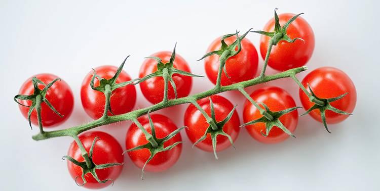 Польза и вред помидоров для организма человека