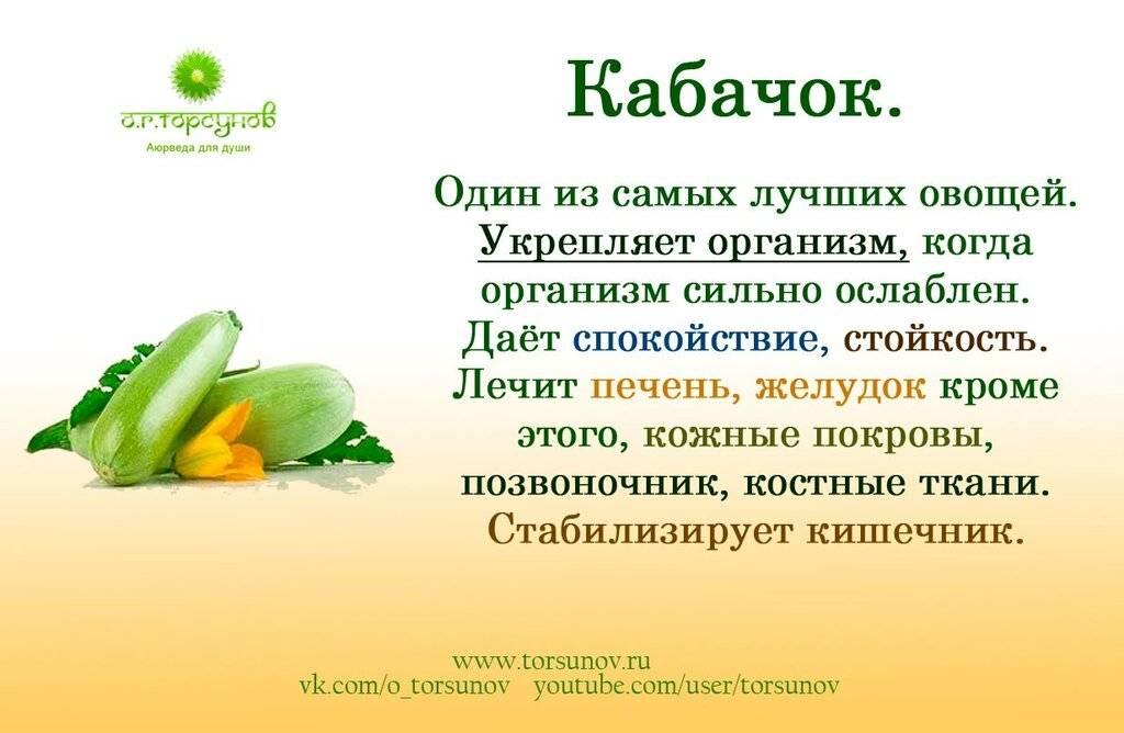 Бамия (окра): что это за овощ, фото растения, польза и вред для здоровья