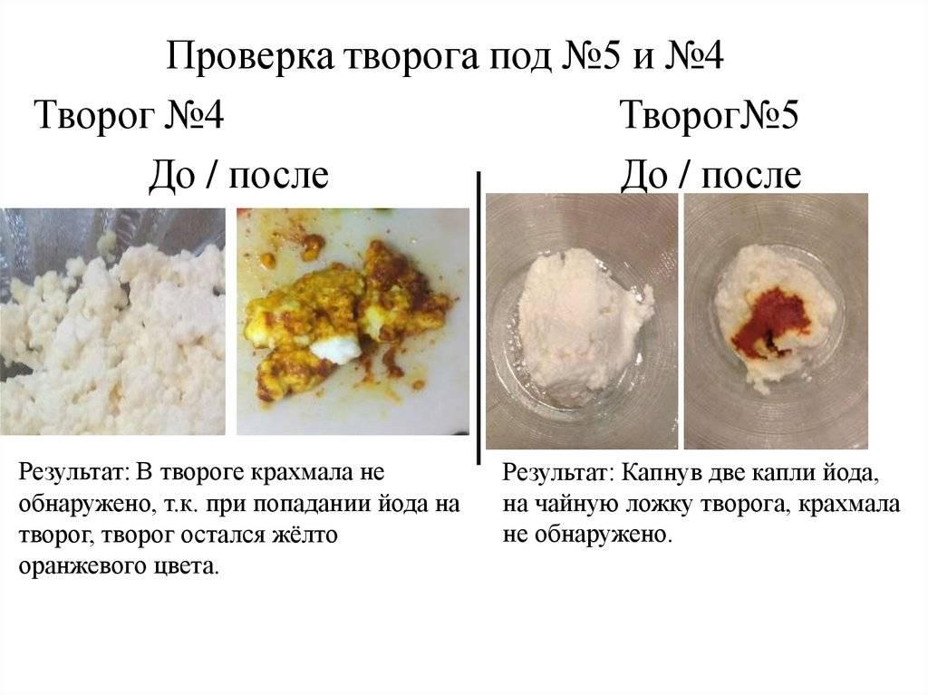 Как проверить качество творога в домашних условиях