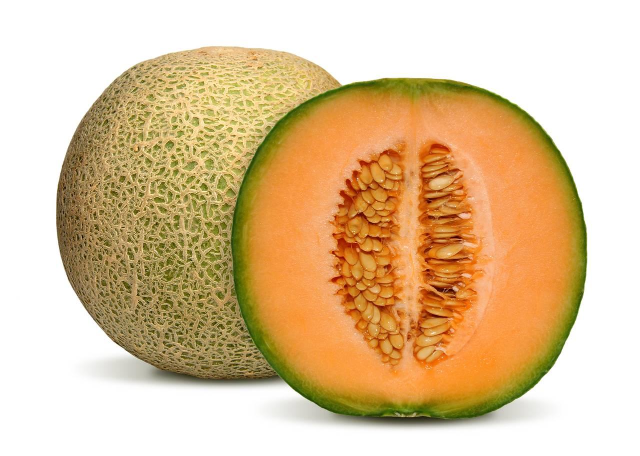 Канталупа (мускусная дыня): полезные свойства, информация о питательной ценности