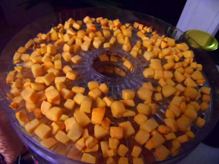 Топ способов заготовки тыквенных семечек: как правильно их сушить в домашних условиях