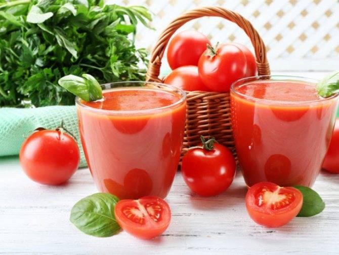 Томатный сок: польза и вред для организма, использование для похудения, интересные рецепты