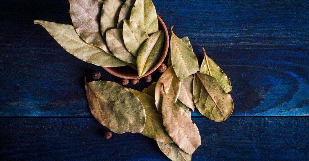 Настойка из лаврового листа