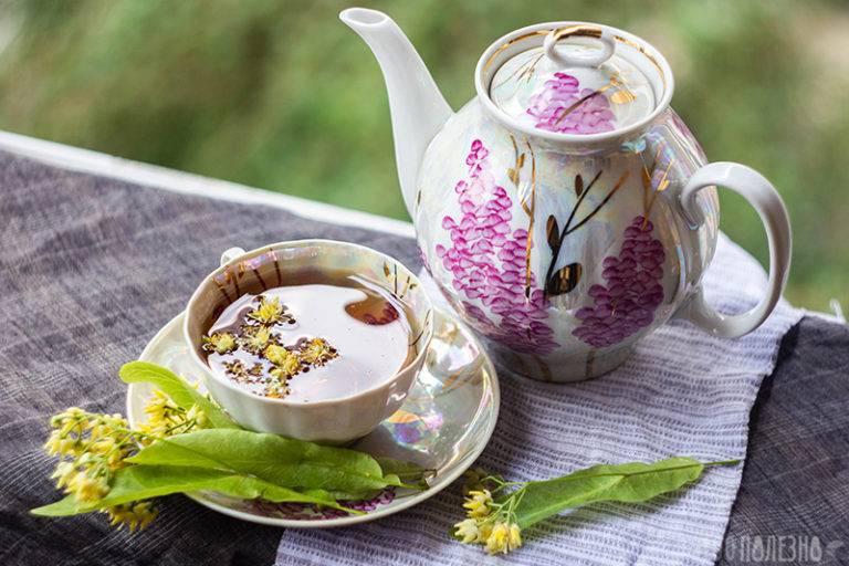Липовый чай — целебные свойства