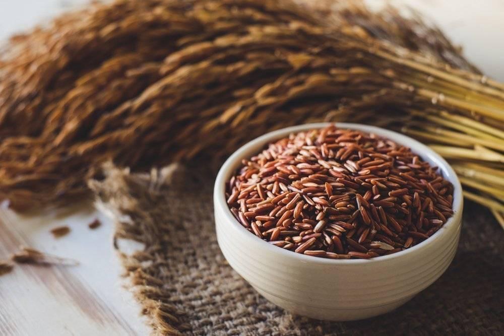 Польза и вред бурого риса для организма человека