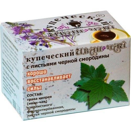 Лечебные свойства листьев смородины: какое собирать сырье, когда и как употреблять